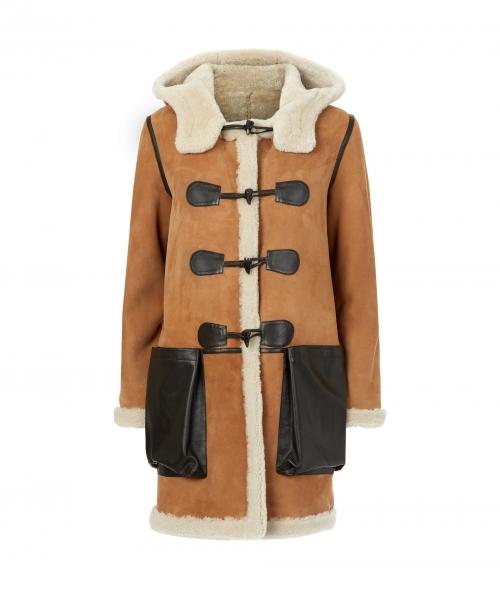 clara-coat