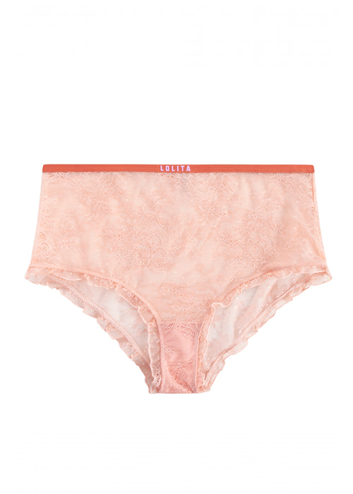 LOVESTORIES MOONFLOWER BRIEF