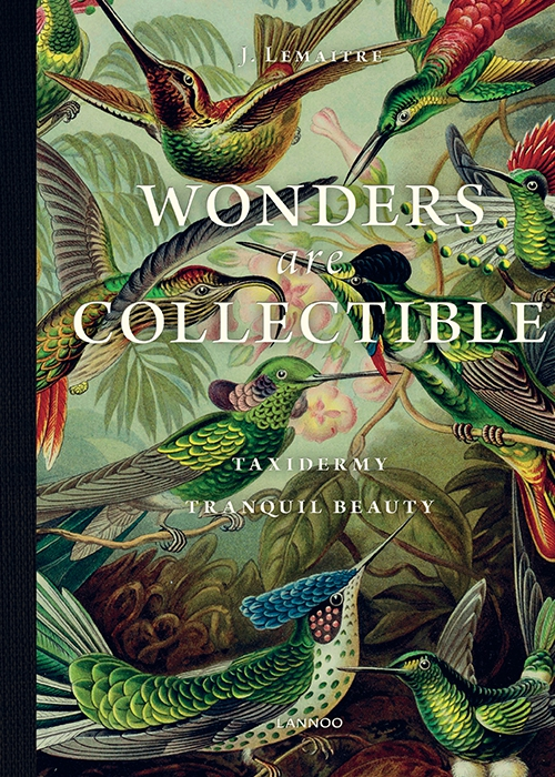 wonders-are-collectible